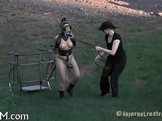 Tormenting beauty's lady-love holes